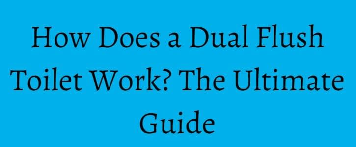 How Does a Dual Flush Toilet Work